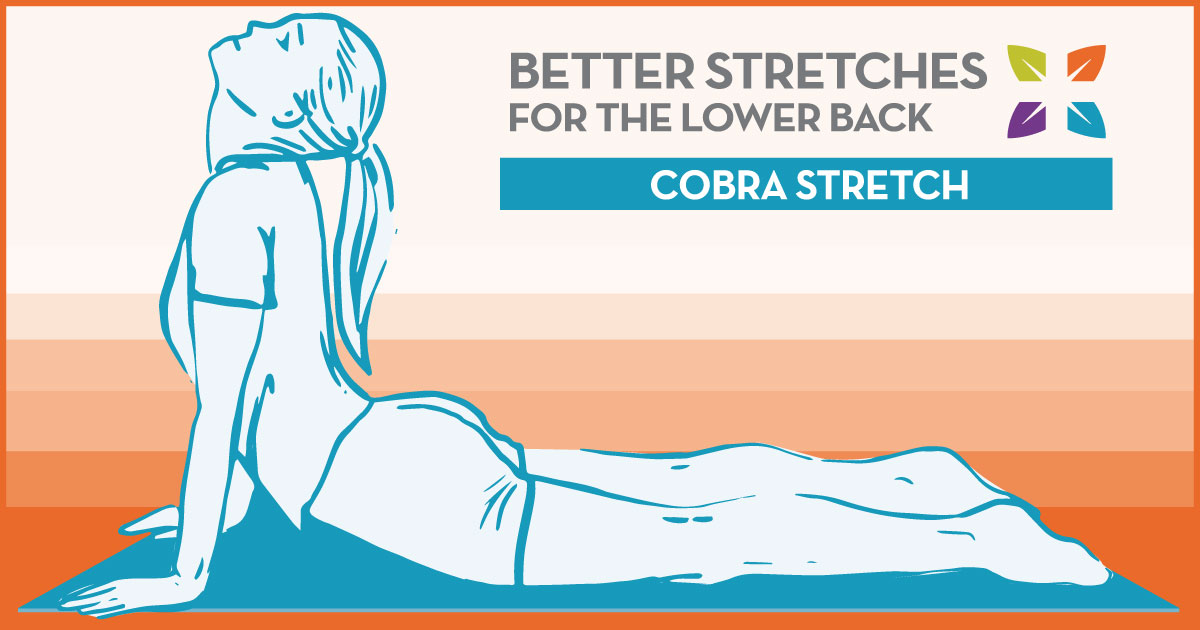 lower back stretches to help keep you pain free