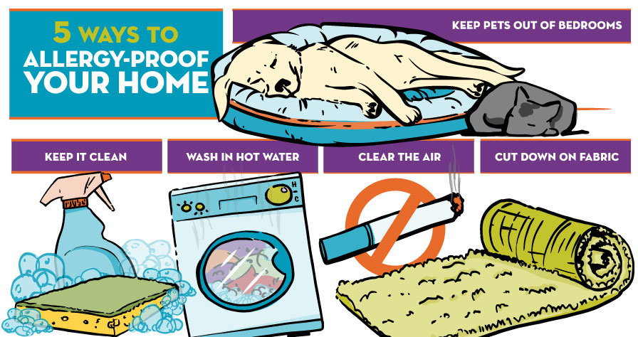 infographic-Allergy-proof-your-home