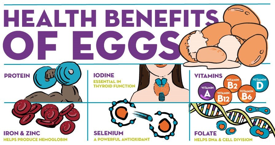 Infographic-Egg-Health-Benefits