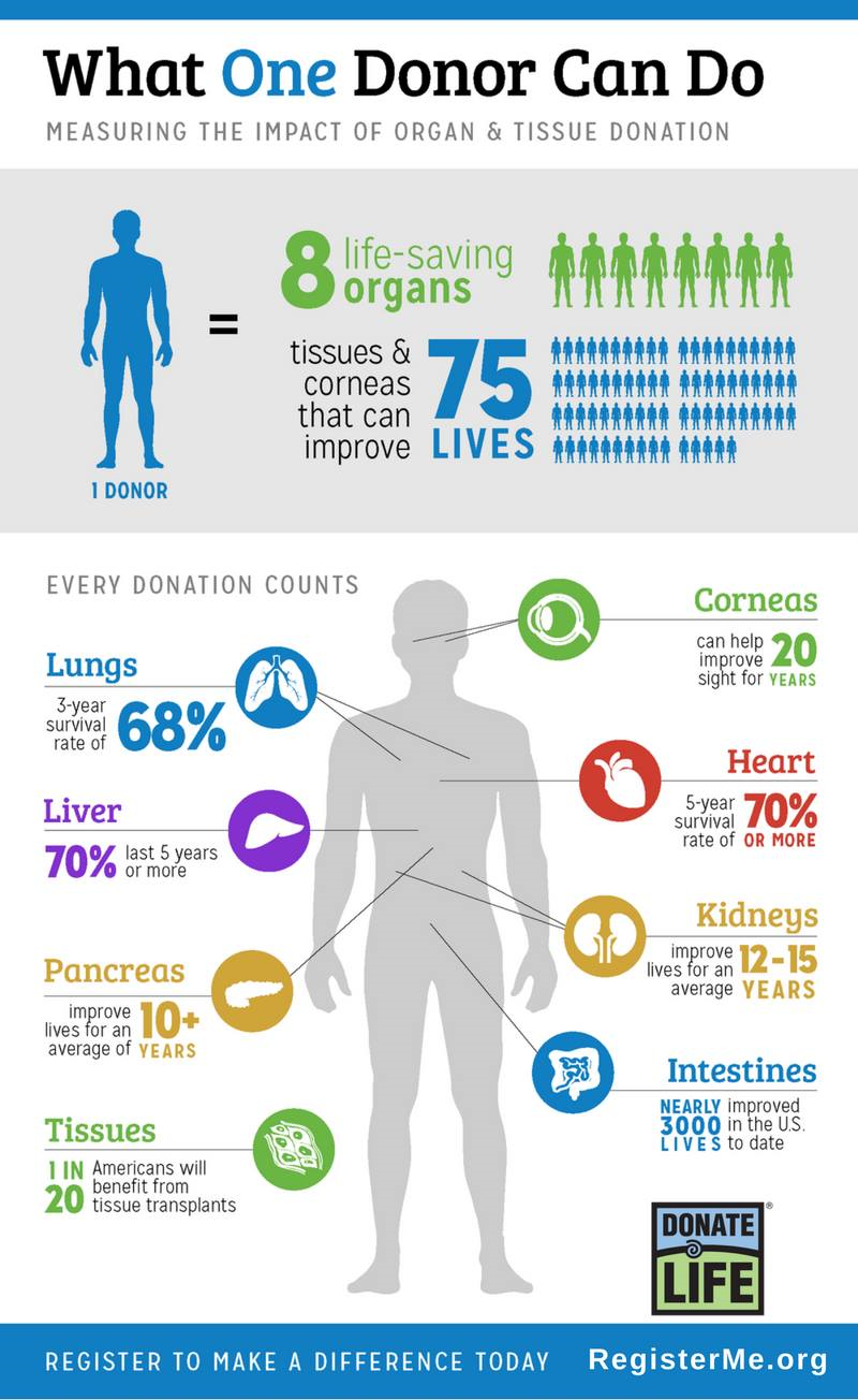 why you should be an organ donor baptist health blog