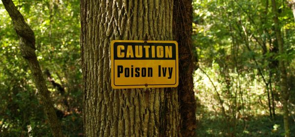 Poison Ivy Treatment