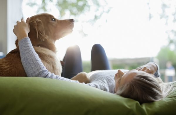 Effects of Pets on Mental Health
